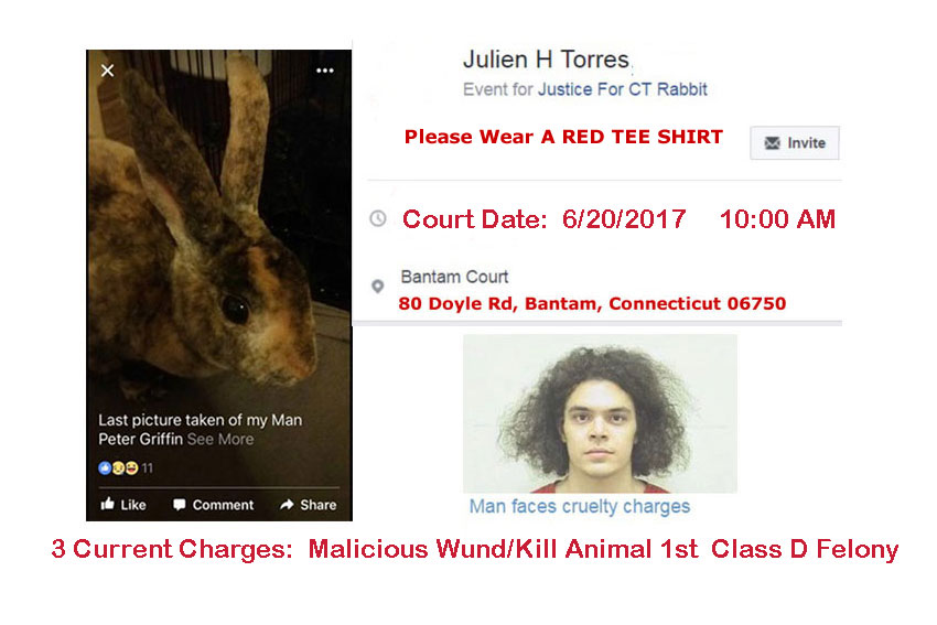 UPDATE-PETITION-PHOTO-6.16.2017
